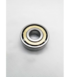 SPECIAL ROLLER BEARING