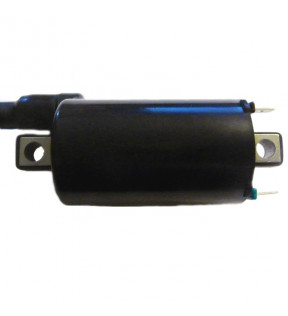 IGNITION COIL 12V CC 4 OHM